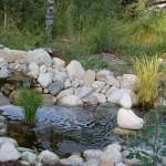 Stream near the Hillhouse